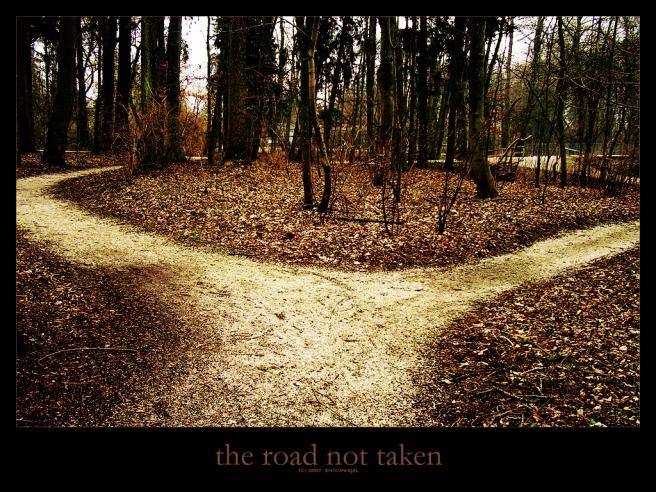 the_road_not_taken